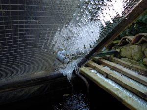 Circulation de l'eau et effet du gel.