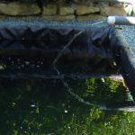 Remplissage du bassin avec de l'eau neuve