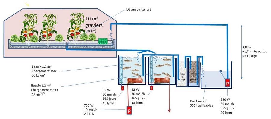 """Système """"Truites aquaponiques"""" très énergivore, avant modification : 33 kWh/kg de truite produit"""