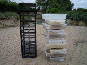 Tours de tiroirs d'élevage de vers de farine avant protection anti musaraignes.