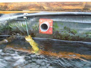 Trop plein du bassin à truites dérivant l'eau vers le bassin tampon en cas de débordement pour cause de bouchage de l'évacuation vers les filtres