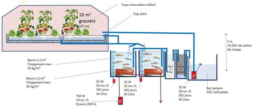 """Système """"Truites aquaponiques"""" optimisé pour l'énergie. Après modification : 7.3 kWh/kg de truite produit."""