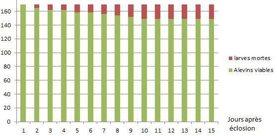 Evolution des larves viables au cours de la résorption du sac vitellin.  Reste 87% de larves évoluant en alevin nageant.