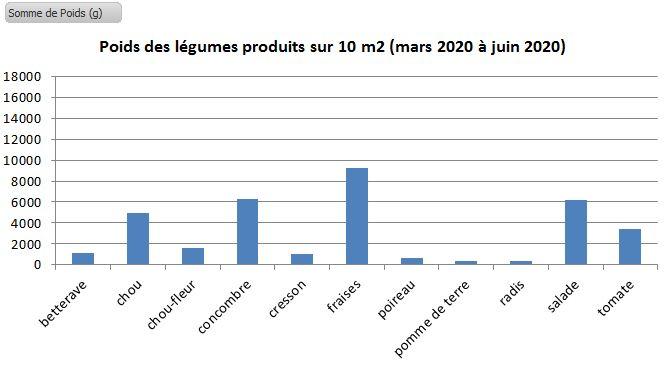 production de légumes sur 10 m2, de mars 2020 à juin 2020