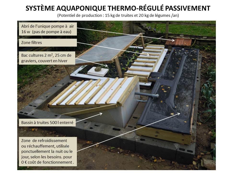 Système aquaponique thermo-régulé passivement
