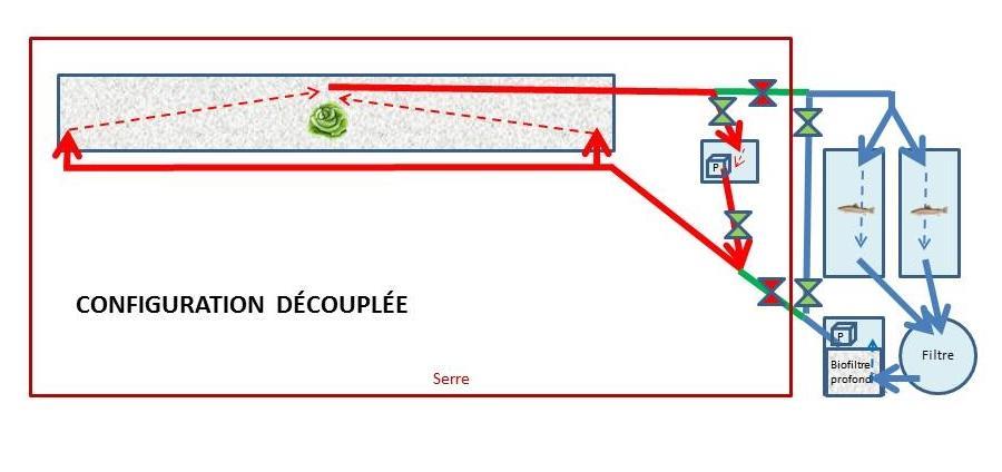 Configuration découplée d'un système aquaponique découplable